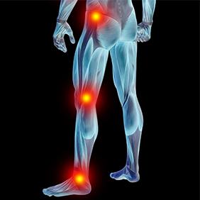 Hip & Back Pain